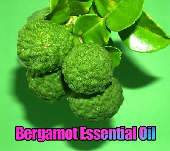 Bergamot Essential Oil